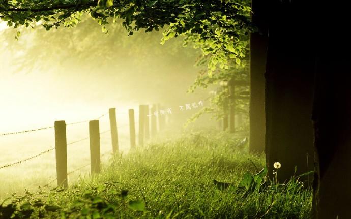 早安心语170308:生活,就是一种永恒沉重的努力