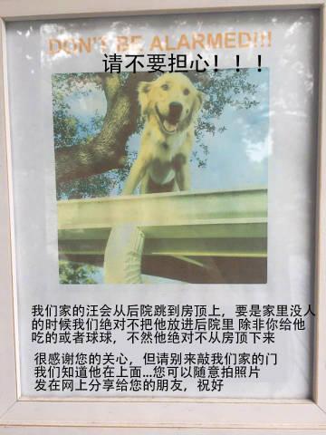 萌宠图片国外一网友贴的关于他家狗的告示,邻居:-萌宠
